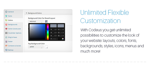 Codeus — Multi-Purpose Responsive Wordpress Theme - 20