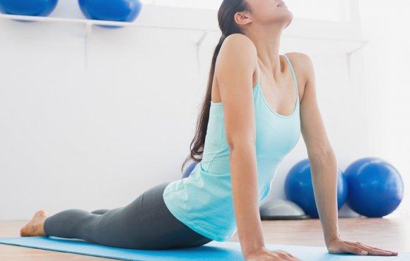 Health Body Programm
